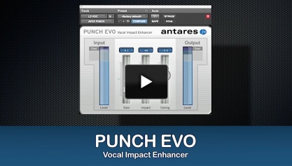 Punch Evo Video Screenshot